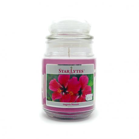 Starlytes Magenta Blossom 18,0 oz