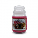Starlytes Soothing Cinnamon Spice 18,0 oz