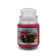 Starlytes Soothing Cinnamon Spice