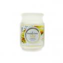 Starlytes Frosted Citrus Fresh 18 oz.