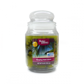 Better Homes Swaying Palm Leaves 18,0 oz