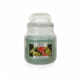 Starlytes Delicious Guava 3,0 oz